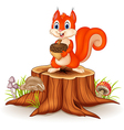 Cartoon squirrel holding pinecone on tree stump vector image vector image