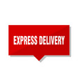 express delivery red tag vector image vector image