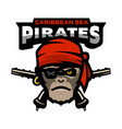 pirate is a monkey and pistols vector image vector image