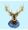 Watercolor handsome deer vector image vector image