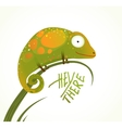 Colorful Lizard Childish Animal Fun Cartoon with vector image