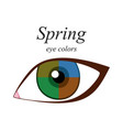 eye colors for spring type vector image vector image