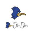 roadrunner mascot vector image