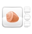 Sea summer beach and travel icon with sea shell on vector image