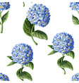seamless pattern with hortensia vector image