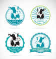 set an dairy cows label vector image vector image