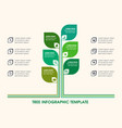 tree infographic icons numbers placeholder text vector image vector image