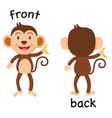 opposite words front and back vector image