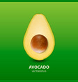 3d realistic half avocado with seed closeup vector image vector image