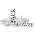 back exercise lower pain relief techniques text vector image vector image