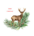 christmas reindeer with a green fir branch vector image