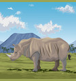 colorful scene african landscape with rhino vector image