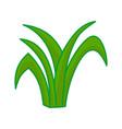 grass leaves cartoon design graphic vector image