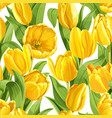 seamless pattern yellow tulips realistic vector image vector image