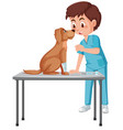a vet helping dog vector image