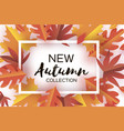 autumn paper cut leaves new autumn collection vector image vector image