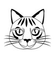 cute head cat feline striped character vector image