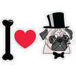 I love pugs old fashion gentleman with hat cigar vector image