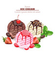 ice cream scoops chocolate vanilla and vector image vector image