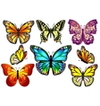Set of Colorful Realistic Isolated Butterflies vector image vector image