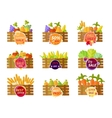 Set of Stickers Grocery Sale Fruits and Vegetables vector image