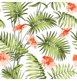 the branch a palm tree vector image vector image