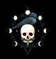 black raven on skull vector image