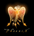 burning phoenix bird on black background vector image vector image