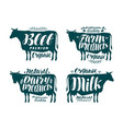 cow label set milk beef dairy products meat vector image