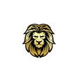 lion head logo design template vector image vector image