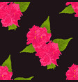 pattern of pink flower on black background vector image vector image