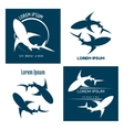 sharks logo vector image vector image