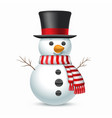 snowman with top-hat and scarf vector image vector image