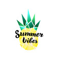 summer vibes text in ananas holiday beach party vector image vector image