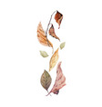 watercolor card with fall leaves vector image