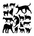 wild caracal cat animal silhouettes vector image
