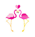 graphics flamingo lovers vector image vector image