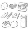 set of potato products vector image vector image
