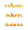 autumn calligraphy collection autumn lettering vector image