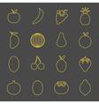FruitIconsLinear2 vector image vector image
