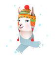 llama wears peruvian hat with ethnic ornament vector image vector image