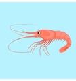 Shrimp Flat Design vector image vector image