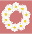 white aster daisy flower wreath vector image vector image