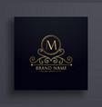 premium letter m logo concept design with vector image