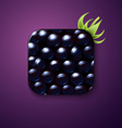 Blackberry texture icon stylized like mobile app vector image vector image