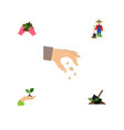 flat icon sow set of sow man plant and other vector image