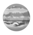 Jupiter icon in monochrome style isolated on white vector image vector image