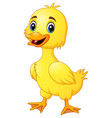 little duck make a happy vector image vector image