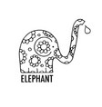 ornate elephant design vector image