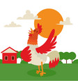 rooster singing or performing song on country land vector image vector image